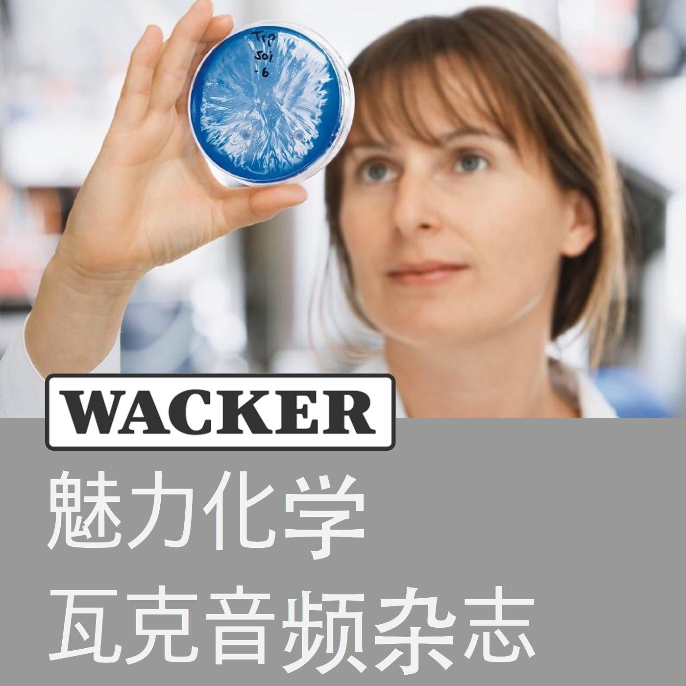 魅力化学 — 瓦克音频杂志 (Wacker Chemie AG)